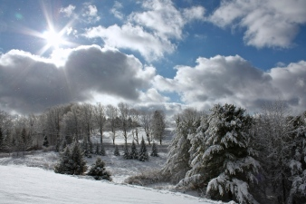 Winter on our hill.