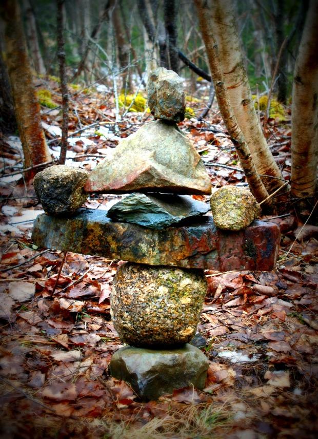 Sprig rock Lomo 1